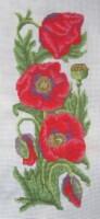 http://data27.i.gallery.ru/albums/gallery/235666-f7b74-95532909-200-u59503.jpg