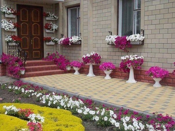 Цветочные клумбы во дворе частного дома своими руками