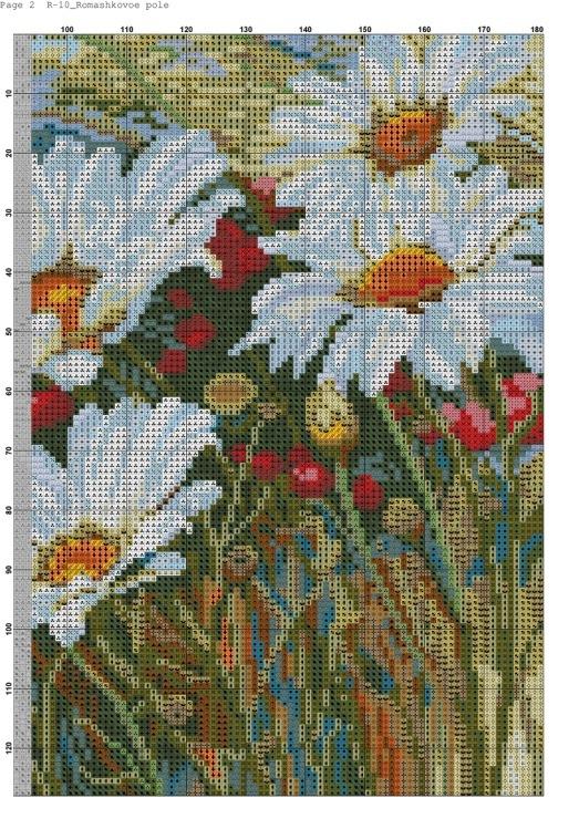 Схемы для вышивки ромашковое поле